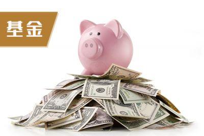 基金从业《证券投资基金基础知识》章节习题(6)